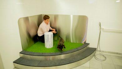 Photo of В аеропорту Гельсінкі відкрили вбиральню для тварин