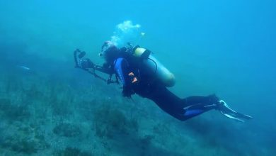 Photo of У районі Бермудського трикутника знайдено судно, яке затонуло майже 100 років тому