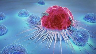 Photo of Вчені прогнозують створення універсальних ліків проти раку