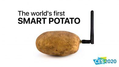 """Photo of Француз створив гаджет для """"спілкування"""" з картоплею"""