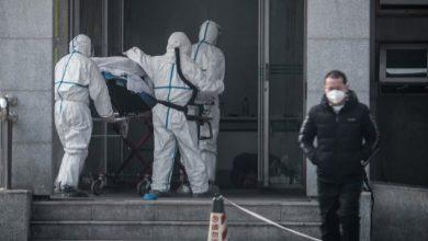 Photo of Коронавірус за добу побив рекорд смертей: статистика