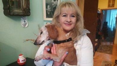 Photo of Померла найстаріша в Україні собака
