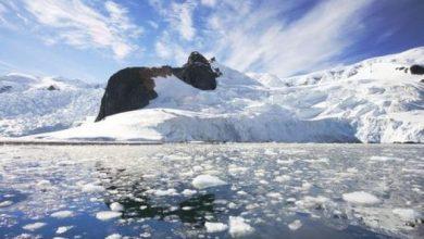 Photo of В Антарктиці зафіксували рекордні 20 градусів тепла