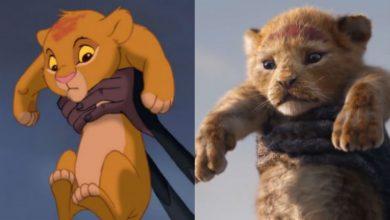 """Photo of В Южной Африке бабуин и львенок повторили сцену из """"Короля льва"""""""