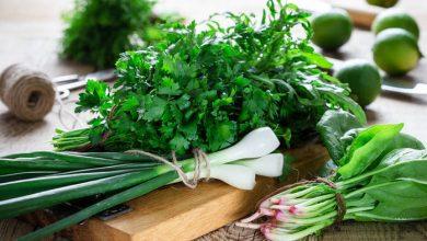 Photo of Як зберегти зелень надовго без втрати вітамінів: корисні поради