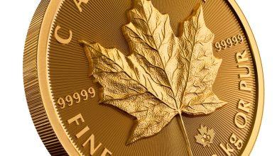 Photo of У Канаді випустили найбільшу в історії золоту монету