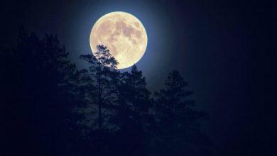 Photo of Місячний календар на квітень 2020 року: як Місяць впливає на людину