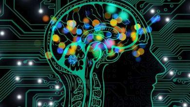 Photo of Лікарі повідомили, як поліпшити роботу мозку