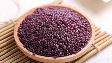 Photo of Фіолетовий рис: в чому секрет нового засобу довголіття