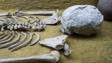 Photo of На острові Корсика знайдено етруську гробницю з коштовностями