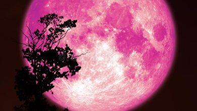 Photo of У квітні українці зможуть спостерігати рожевий Місяць