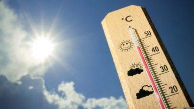 Photo of Вчені прогнозують, що 2020 рік стане рекордно теплим для всієї планети