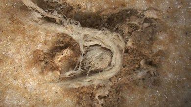 Photo of У Франції знайшли шматок мотузки віком 50 тисяч років