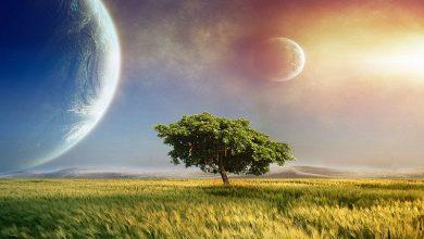 Photo of 5 дивовижних фільмів про чудеса нашої планети