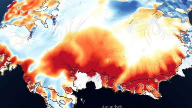 Photo of В Антарктиді відбувається кліматична катастрофа (відео)
