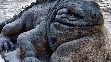 Photo of Як живі: майстер створює моторошно реалістичні скульптури з піску