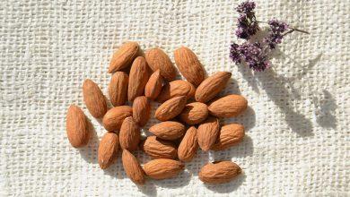 Photo of Вчені визначили які горіхи найкорисніші