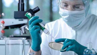 Photo of Вчені виявили нові симптоми коронавірусної інфекції