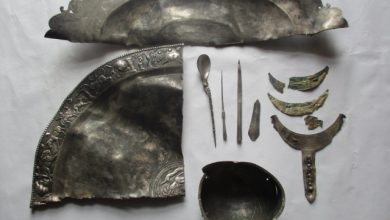 Photo of Українські дипломати завадили продати у Німеччині незаконно вивезене римське срібло