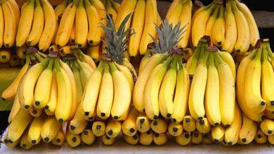 Photo of Банани: в чому їх особливість та кому їх бажано не вживати