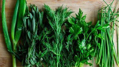 Photo of Без шкоди для здоров'я: яку зелень можна купувати вже в травні