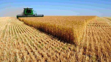 Photo of Найбільша європейська асоціація фермерів піддала нищівній критиці наміри ЄС і України розширити торгівельне співробітництво