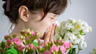 Photo of Алергія: симптоми та способи лікування