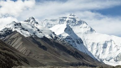 Photo of У Тибеті виявили майже три десятки невідомих вірусів