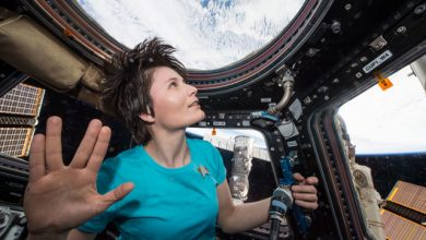 Photo of Вчені з'ясували, що перебування у космосі по-різному впливає на організм жінок і чоловіків