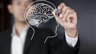 Photo of Вчені назвали продукти, які покращують пам'ять людини