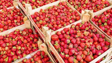Photo of Суп з полуницею: цікаві рецепти з літньою ягодою