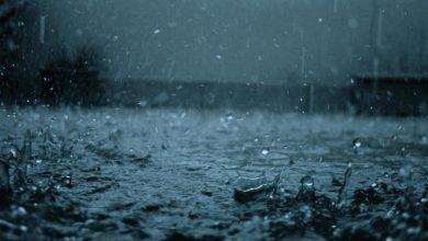 Photo of На Україну знову насуваються зливи: синоптик дала прогноз