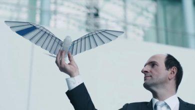 Photo of Німці створили птахів-роботів