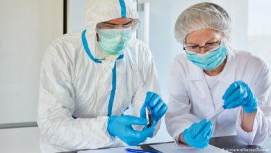 Photo of Китайські вчені знайшли вірус, схожий на COVID-19 ще у 2013 році – ЗМІ