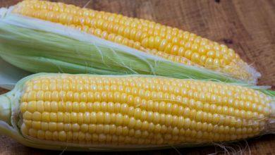 Photo of Як правильно варити кукурудзу в домашніх умовах