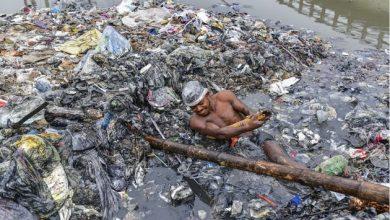 Photo of Як виглядає найгірша робота у світі (ФОТО)