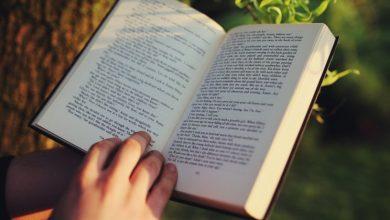 Photo of 10 нових книжок для ідеальної відпустки