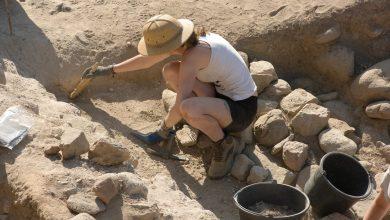 Photo of День археолога 2020: оригінальні привітання у віршах
