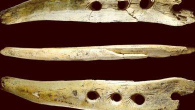 Photo of Розгадано таємницю інструмента, який змінив історію людства