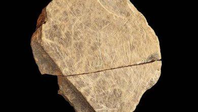 Photo of Вчені знайшли найдавніший твір мистецтва