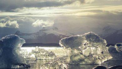 Photo of Лід в Арктиці може повністю розтанути вже в наступні 15 років