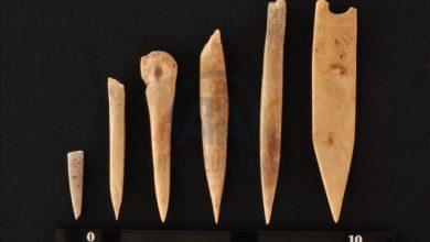 Photo of Інструменти часів неоліту знайдено під час розкопок у Туреччині