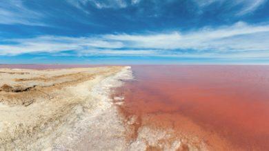 Photo of Українське рожеве озеро тепер можна побачити онлайн
