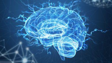 Photo of Як тренувати свій мозок: 11 ефективних дій