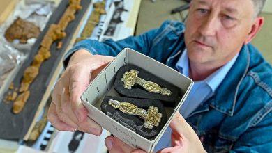 Photo of Археологи знайшли у Німеччині могилу принца з коштовностями і гаремом
