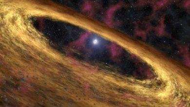 Photo of Китайські вчені виявили найпотужніше магнітне поле у Всесвіті