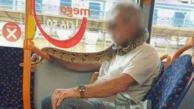 Photo of У Великобританії пасажир в автобусі замість маски прикрив обличчя живою змією