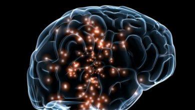 Photo of Американські вчені випробували мозковий імплант