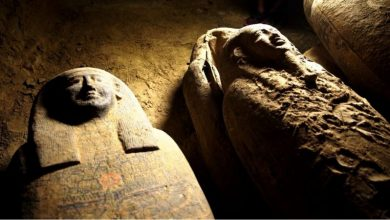 Photo of Одна з найбільших знахідок в історії: в Єгипті виявили 27 стародавніх саркофагів (ФОТО)