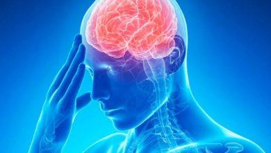 Photo of Вчені розповіли про простий спосіб поліпшити роботу мозку